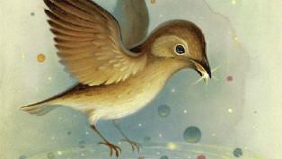 Buzelli universe bird thumb