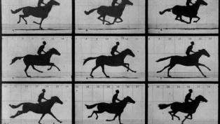 Muybridge The Horse in Motion