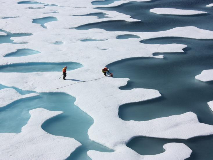 Intemperate Planet: How Natural Systems Magnify the Effects of Global Warming