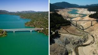 California water comparison thumb