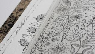 Secret Garden adult coloring book hero